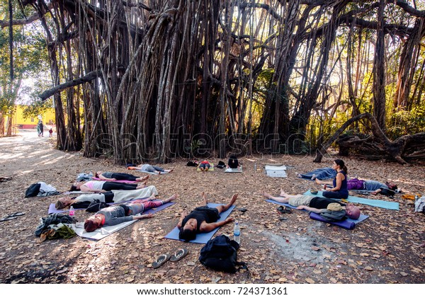 GOA, India - January 21,2017: Occupation group yoga in Mandrem.