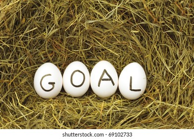 goal or business achivement concept with eggs on straw