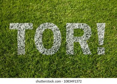 Goal! (in german) written on a soccer meadow