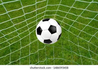 Goal. Soccer ball in net with grass background.