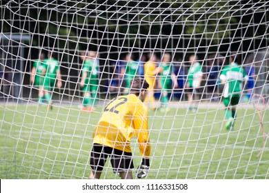 Goalie in a soccer goal