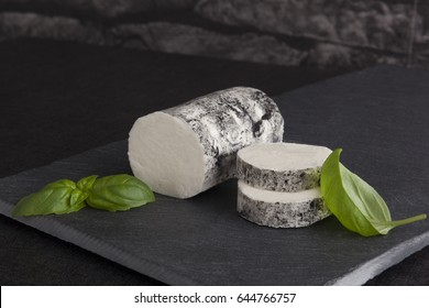Goat cheese with basil on the minimalistic plate. Luxurious cheese eating.