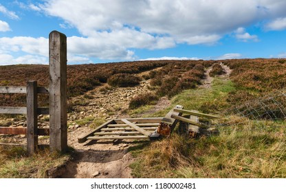 Goathland, Yorkshire, UK. Heather in bloom separated by footpath and broken wooden gate in North York Moors in Goathland, Yorkshire, UK.