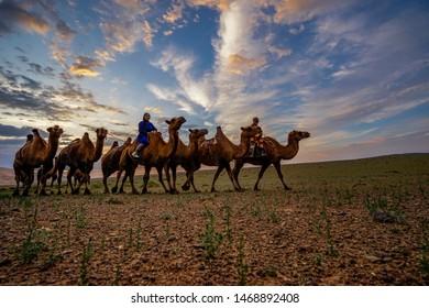 Gobi / Mongolia - 07 10 2019: People riding camel in Gobi desert Mongolia