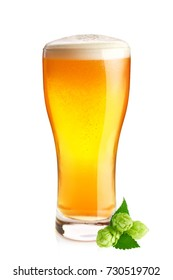 Goblet of fresh cold beer and organic hop with green leaves, isolated on white background.