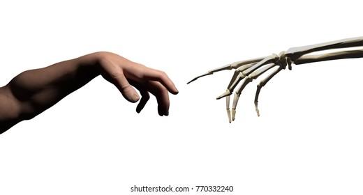 God hand and skeleton