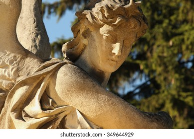 The goddess of love in Greek mythology, Aphrodite (Venus in Roman mythology)