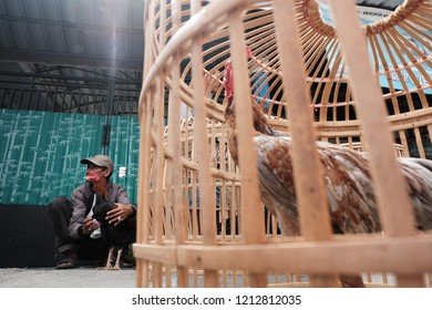 Godean, Sleman, Yogyakarta / Indonesia - October 25 2018 : Rooster and chicken Seller at traditional market Godean.