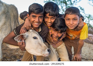 GODWAR REGION, INDIA - 12 FEBRUARY 2015: Four boys from Rabari tribe and calf. Loss of tradition gains pace from every new generation. Rabari or Rewari are an Indian community in the state of Gujarat.