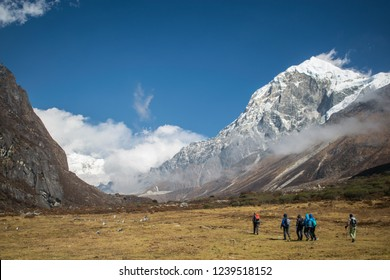 Goecha La Trek in Sikkim, Meadow Walk, Mount Kanchenjunga Base Camp Trek