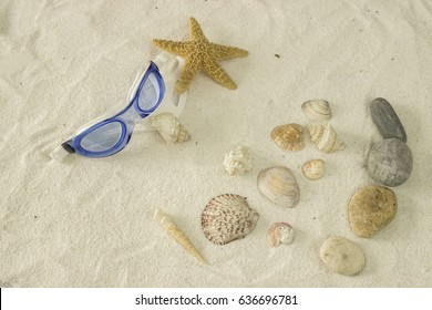 A gogles for swimming and sea shells on the sand