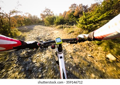 Going Down with mountain bike on the dirty Road in the forest. Pov original point of view