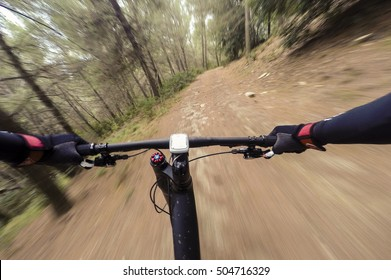 Going down on dirty road in a forest. Cyclist during a mountain bike race in a forest. Motion effect. POV Original point of view