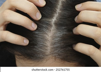 Going gray. Young woman shows her gray hair roots. Adobe RGB.