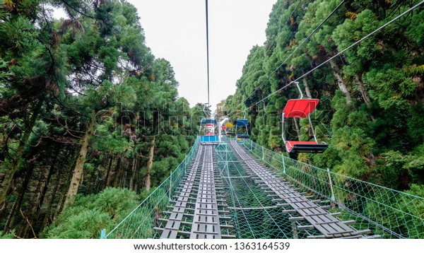 Going on a chair lift up towards Mount. Takao with flanked by tall green pine trees