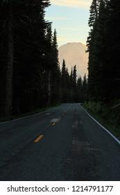 Going To Sunrise Road In Mt Rainier National Park