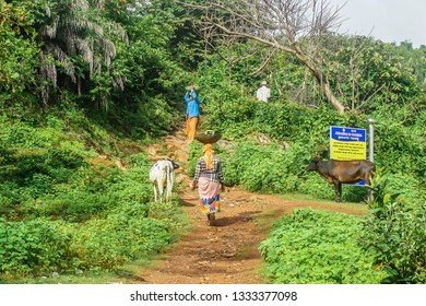 Gokarna, India - July 31, 2017: Indian women haul small stones to the top of the hill and cover the path with them.