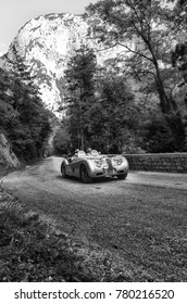 GOLA DEL FURLO, ITALY - MAY 19: JAGUAR XK 120 OTS LIGHTWEIGHT 1952  on an old racing car in rally Mille Miglia 2017 the famous italian historical race (1927-1957) on May 19 2017
