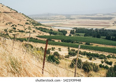 Golan heights in northern Israel, view from a high point in summer. Agricultural fields in the distance.