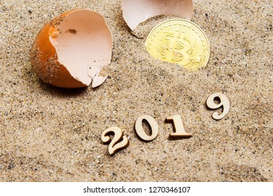 Gold bitcoins in a cracked eggshell and wooden numbers forming 2019 new year. Bitcoins and New Virtual money concept