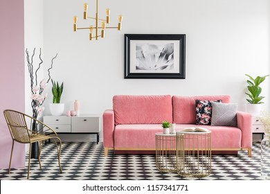 Gold chair and pink sofa in modern living room interior with poster and checkered floor. Real photo