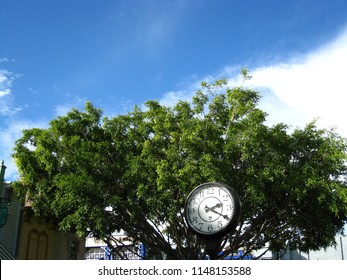 Gold Coast, Australia - August 1 2018: Clock in with green trees and deep blue sky as background