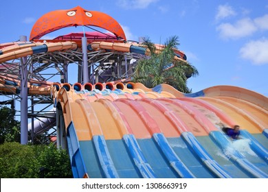 GOLD COAST- JAN 30 2019:People ride on a water slide named The Bro (Blue Ringed Octopus) in White Water World, Gold Coast, Australia