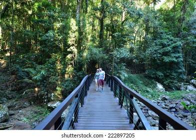 GOLD COAST - OCT 06 2014:Couple visit in Springbrook National Park in Queensland Australia.It's a World Heritage Rainforest featuring many waterfalls, trees and wildlife.