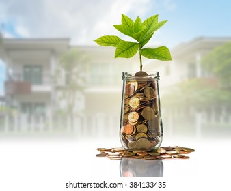 Gold coins and seed in clear bottle on photo blurred house background,Business investment growth concept