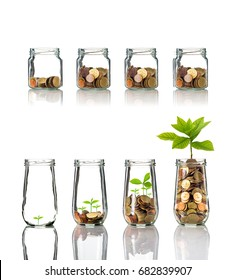 Gold coins and seed in clear bottle on white background,Business investment growth concept, active and passive income concept