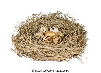 gold egg among a group of bird eggs in nest on white