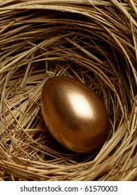 Gold egg in a nest