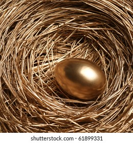 Gold egg in a gold nest