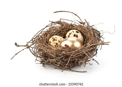 Gold egg in a real nest. Concept for success.