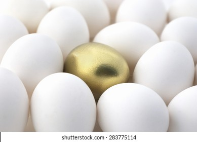 Gold egg surrounded by white eggs.
