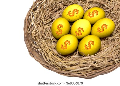 Gold eggs on straw on wicker basket isolated and include path, symbol of the value in business