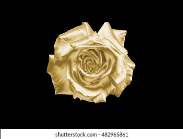 Gold flower on a black background .