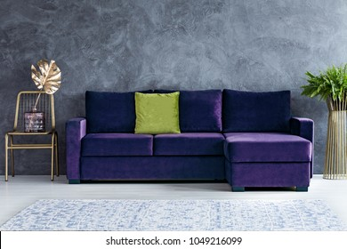 Gold leaf on chair next to purple sofa with green pillow against concrete wall in living room interior