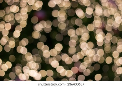 gold light of chrismas bokeh