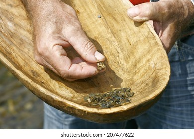 Gold Panning with Old Wooden Pan