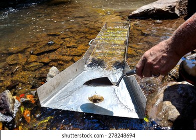 Gold panning in a river with a sluice box