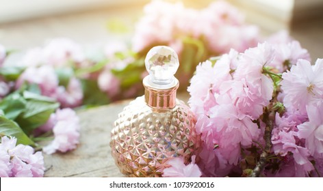Gold perfumes bottle. Oil. Perfumes. Spring tree with pink flowers. Pink flowering tree over nature background / Spring tree / Spring Background.