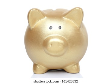 Gold Pig Bank on White background