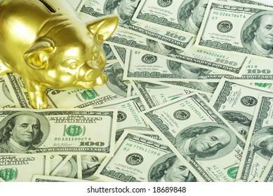 gold piggy bank on a  dollars