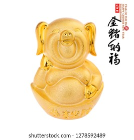 """gold piggy bank,Chinese black characters translation: """"pig"""".right side chinese wording & seal translation:Chinese calendar for the year of pig 2019"""