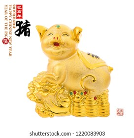 Gold piggy bank,Chinese calligraphy translation: pig.Red stamps translation: Chinese calendar for the year of pig 2019. calligraphy on pig mean good bless for money