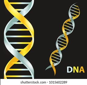 Gold and silver Dna icon. Dna symbol. Dna helix symbol. Gene icon. Rastr illustration on black background.