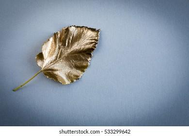 A gold tree leaf
