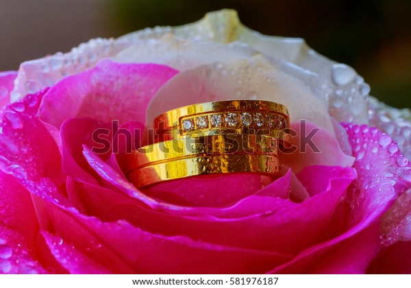 Gold wedding rings and pink roses Rose water drops ring