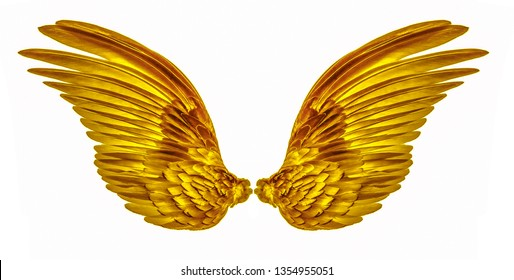 gold wing of bird on white background